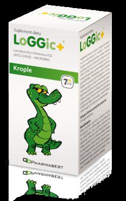 LoGGicPlus_kartonik_visual_08_2019